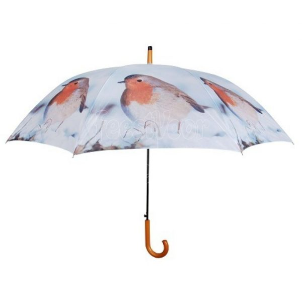 Paraplu met roodborstje, Esschert