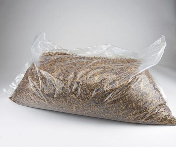 Gedroogde meelwormen, zak 5 kg.