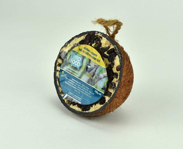 Halve kokosnoot met rozijnen
