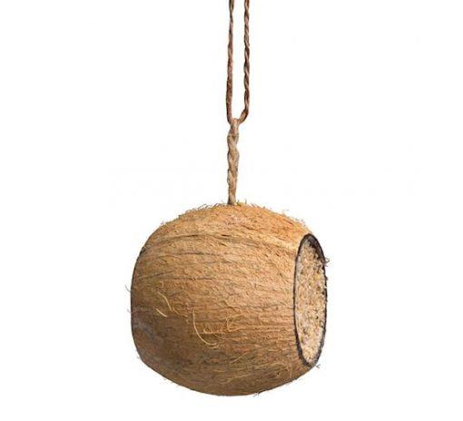 benelux cocosnoot trommel gevuld 205780