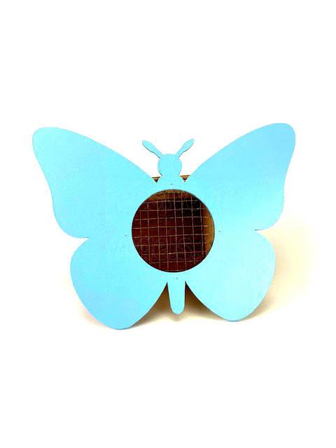 vlinder blauw a IMG 1808