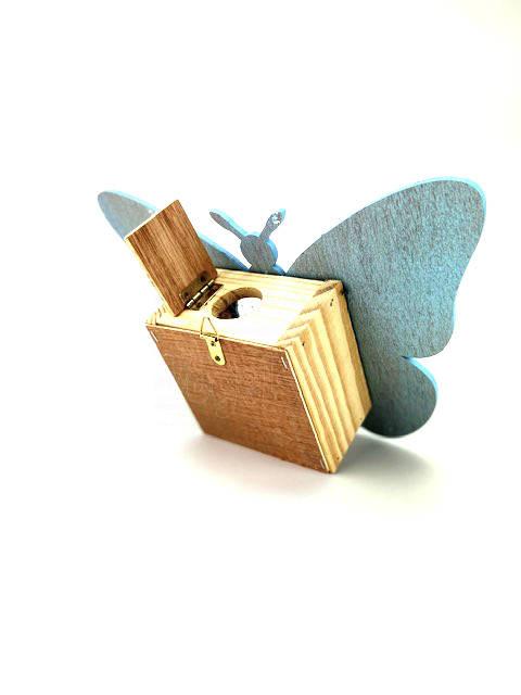 vlinder blauw b IMG 1809
